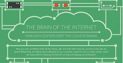 brainoftheinternet